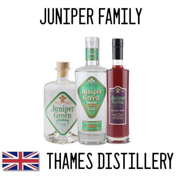 juniper-family